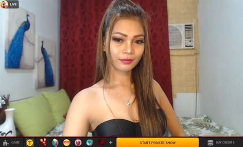 LiveJasmin hosts cam-to-cam chat with top Asian cam models